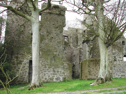 Ringhaddy Tower House, Ringhaddy